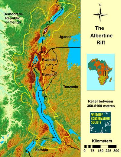 Albertine Rift relief